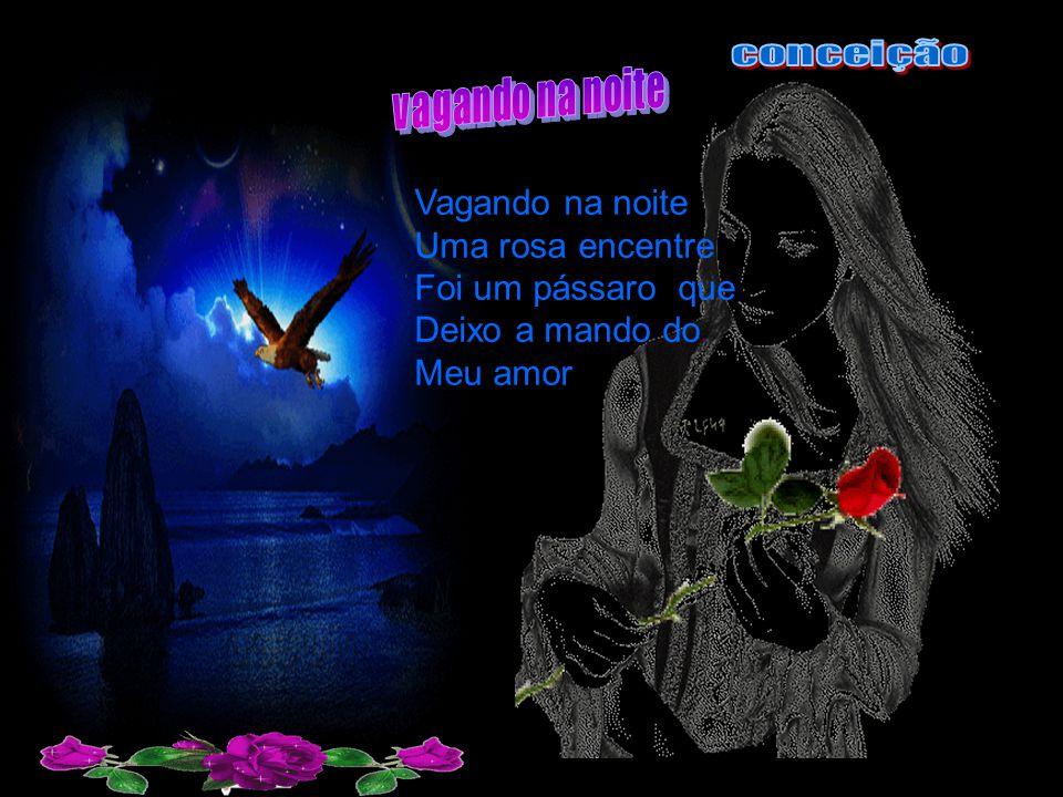 Vagando na noite Uma rosa encentre Foi um pássaro que Deixo a mando do Meu amor