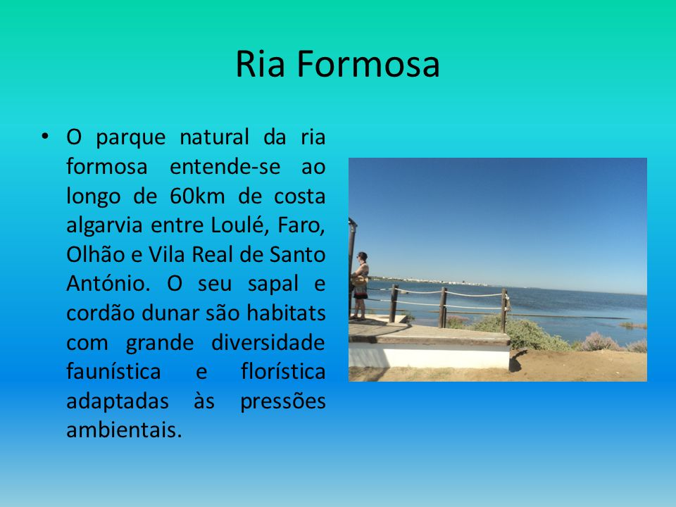 Ria Formosa O parque natural da ria formosa entende-se ao longo de 60km de costa algarvia entre Loulé, Faro, Olhão e Vila Real de Santo António. O seu