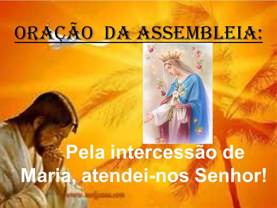 ORAÇÃO DA ASSEMBLEIA: Pela intercessão de Maria, atendei-nos Senhor!