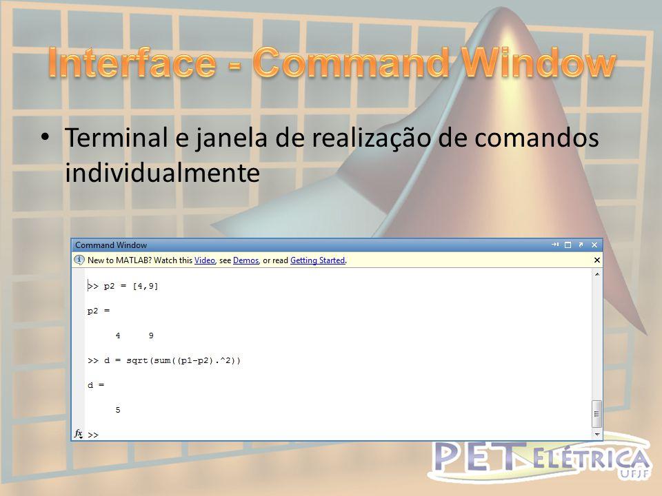• Terminal e janela de realização de comandos individualmente