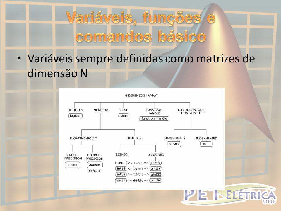 • Variáveis sempre definidas como matrizes de dimensão N