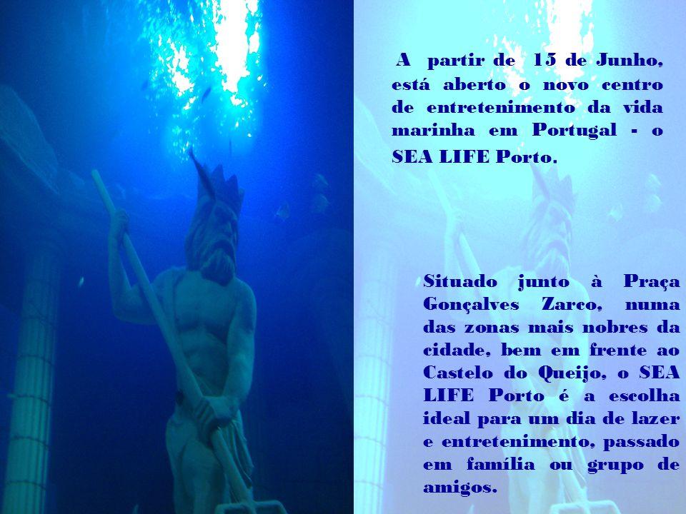 A partir de 15 de Junho, está aberto o novo centro de entretenimento da vida marinha em Portugal - o SEA LIFE Porto.