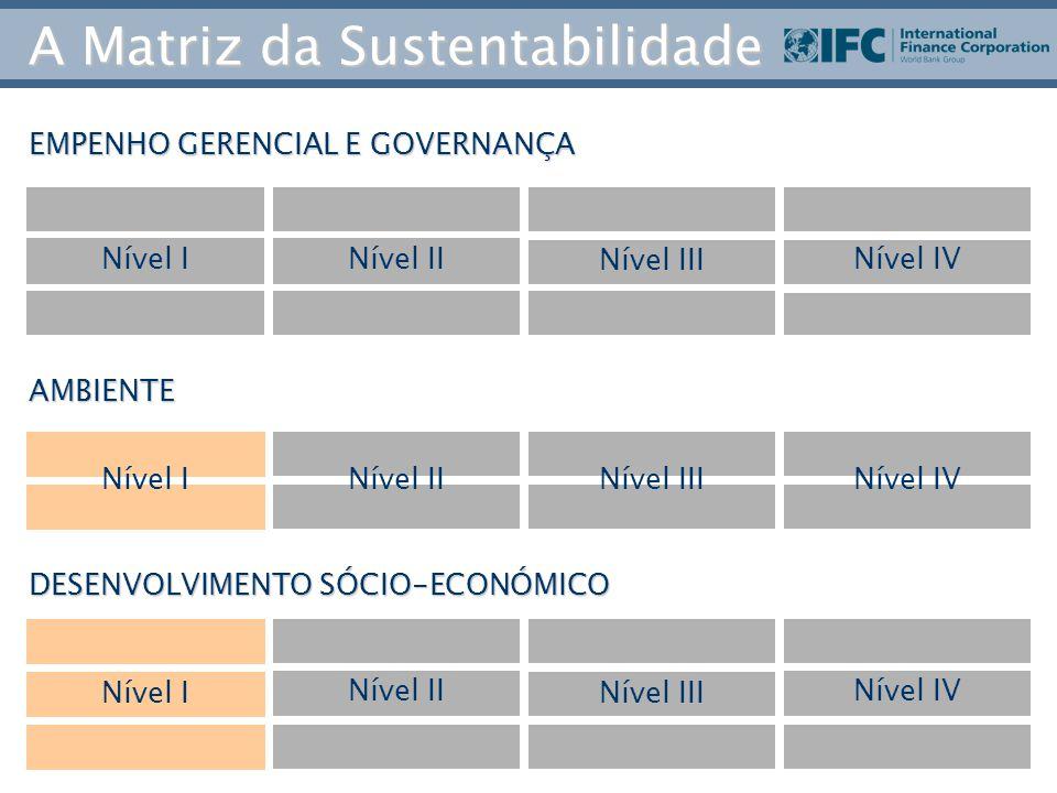 EMPENHO GERENCIAL E GOVERNANÇA AMBIENTE DESENVOLVIMENTO SÓCIO-ECONÓMICO Nível INível II Nível III Nível IV Nível I Nível II Nível III Nível IV Nível INível IINível IIINível IV A Matriz da Sustentabilidade