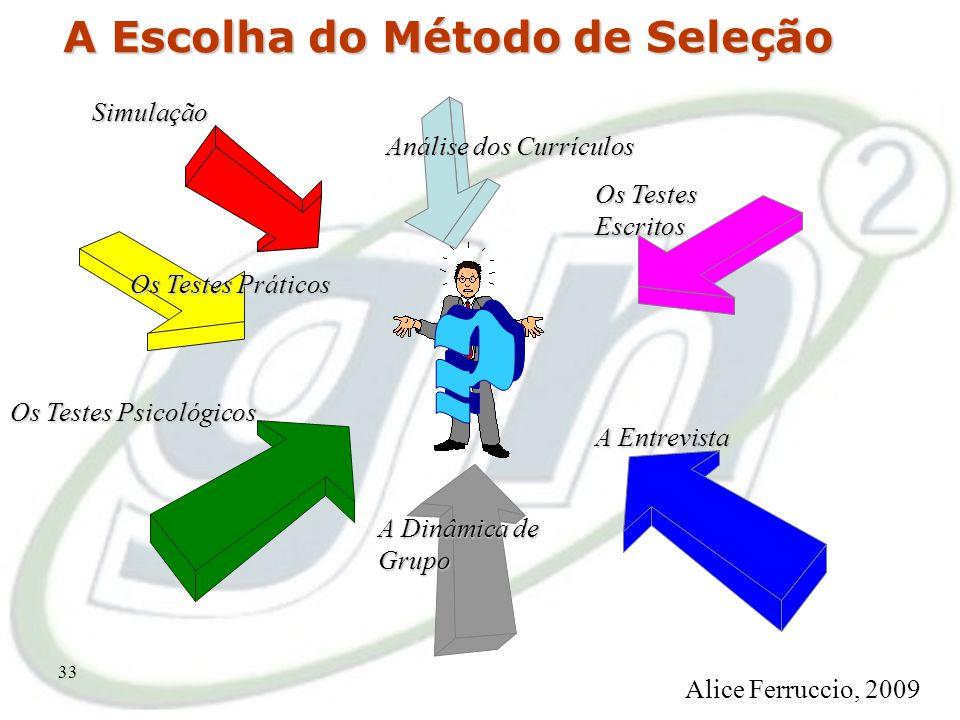 32 O Macroprocesso de Seleção MOMENTO DA instituição Alice Ferruccio, 2009