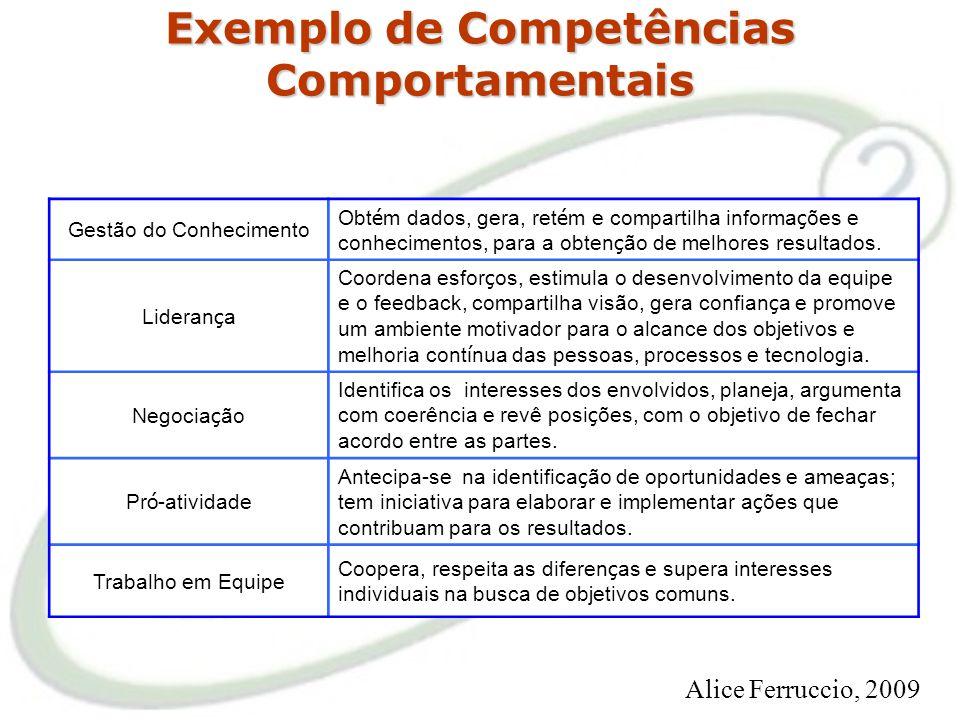 Exemplo de Competências Corporativas Articulação Desenvolve relações de parceria com atores nos setores público e privado, mobilizando-os no sentido d