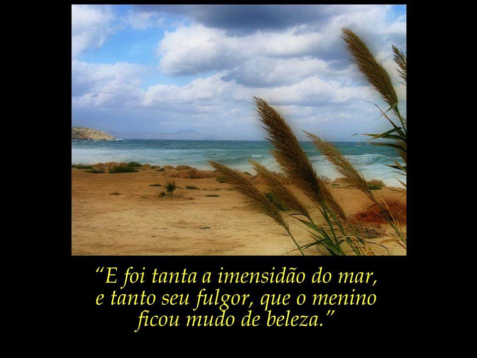 E foi tanta a imensidão do mar, e tanto seu fulgor, que o menino ficou mudo de beleza.