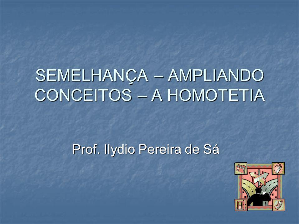 SEMELHANÇA – AMPLIANDO CONCEITOS – A HOMOTETIA Prof. Ilydio Pereira de Sá