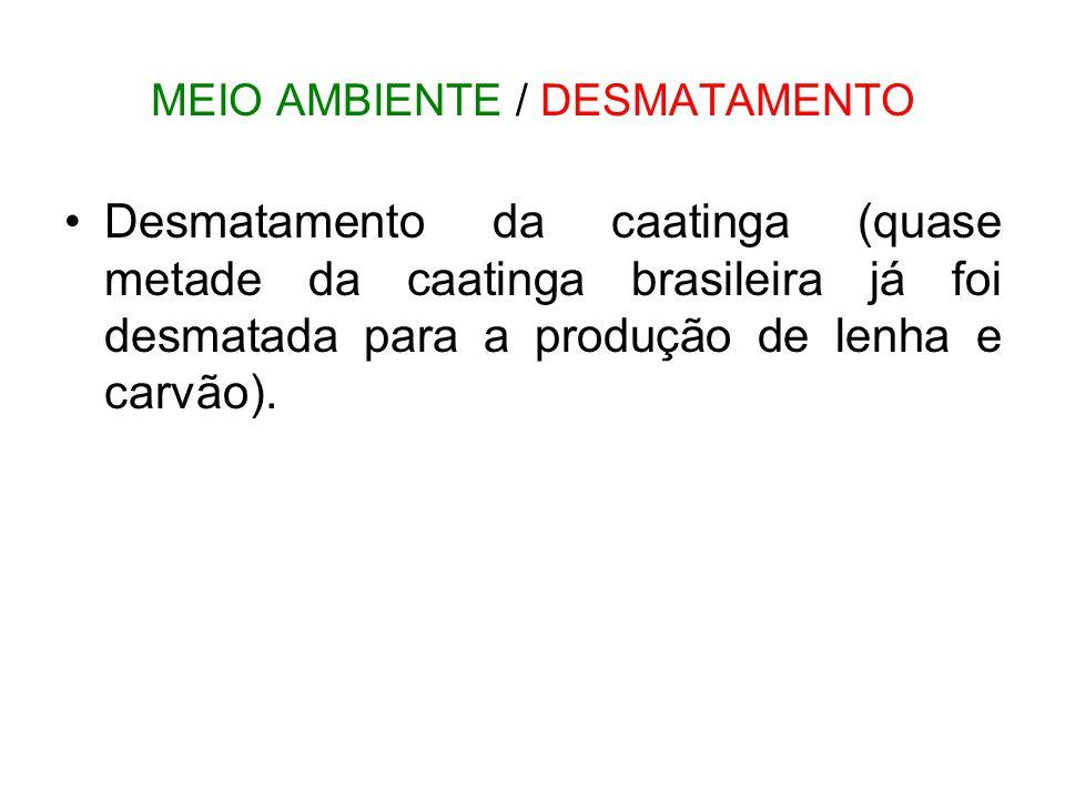 MEIO AMBIENTE / DESMATAMENTO •Desmatamento da caatinga (quase metade da caatinga brasileira já foi desmatada para a produção de lenha e carvão).