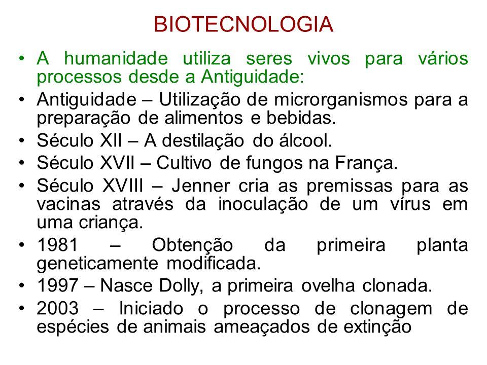 BIOTECNOLOGIA •A humanidade utiliza seres vivos para vários processos desde a Antiguidade: •Antiguidade – Utilização de microrganismos para a preparaç