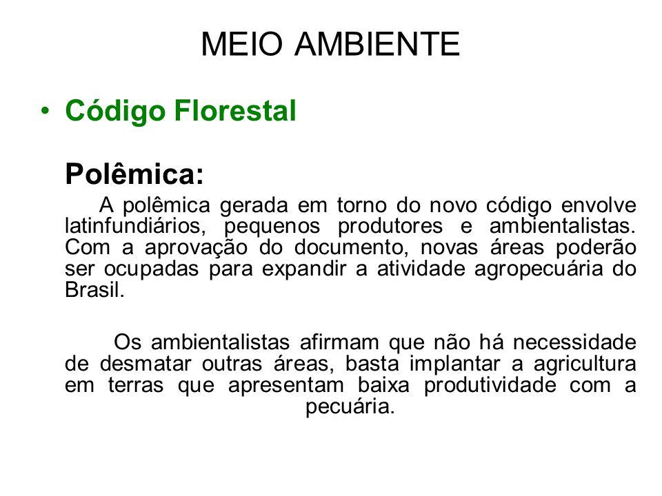 MEIO AMBIENTE •Código Florestal Polêmica: A polêmica gerada em torno do novo código envolve latinfundiários, pequenos produtores e ambientalistas. Com