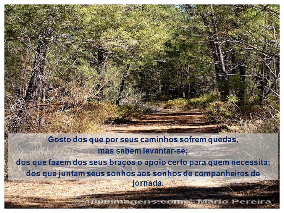 Gosto dos que têm uma história para contar; Dos que traçam seus sonhos pela vida afora; Dos que nasceram sob as bênçãos de Deus e daqueles que, com Ele, constroem as suas estradas.