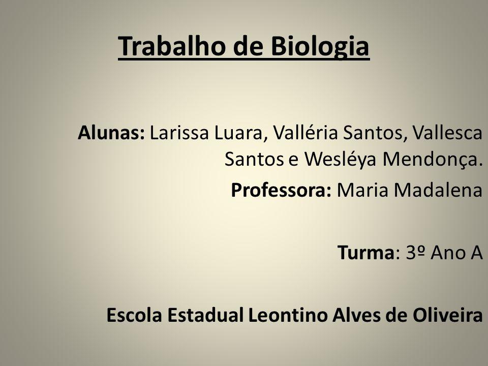 Trabalho de Biologia Alunas: Larissa Luara, Valléria Santos, Vallesca Santos e Wesléya Mendonça. Professora: Maria Madalena Turma: 3º Ano A Escola Est