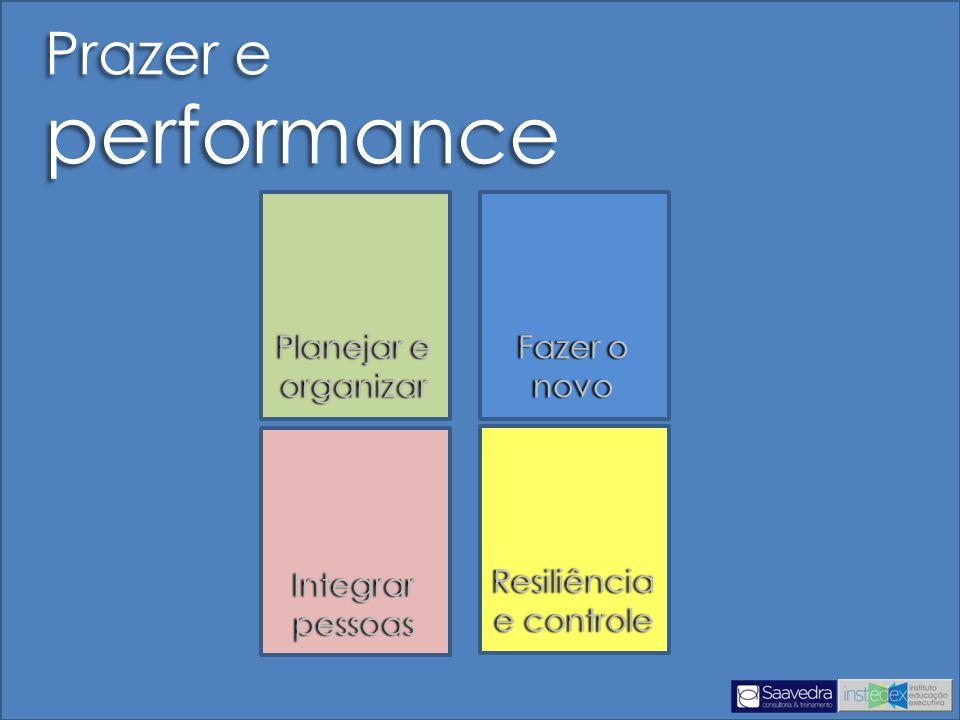 Prazer e performance Planejar e organizar Fazer o novo Integrar pessoas Resiliência e controle Resiliência e controle
