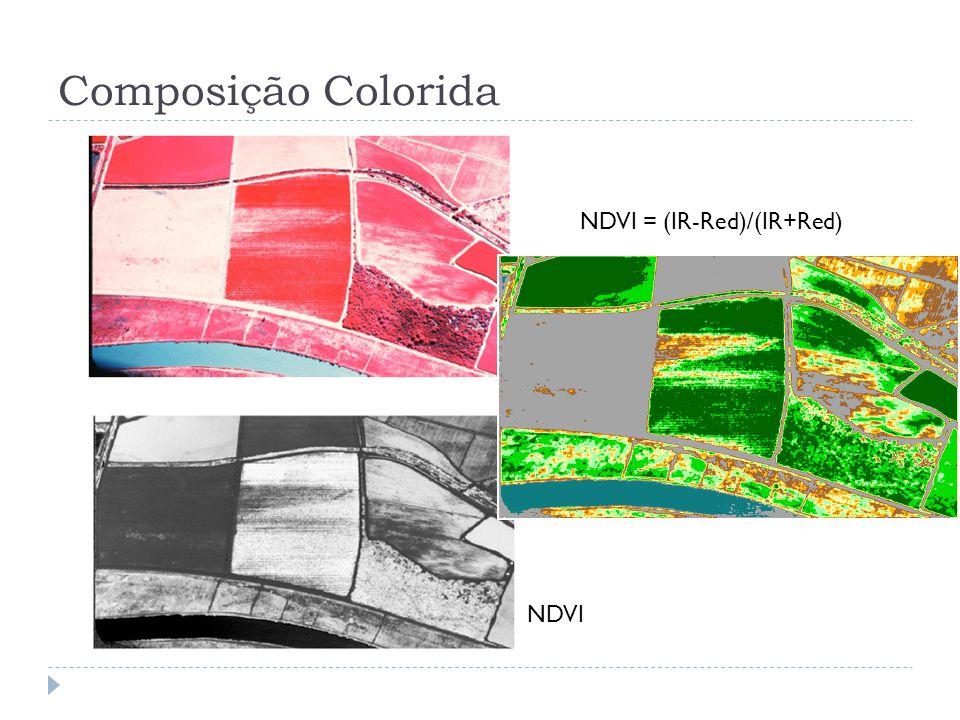 Composição Colorida NDVI NDVI = (IR-Red)/(IR+Red)
