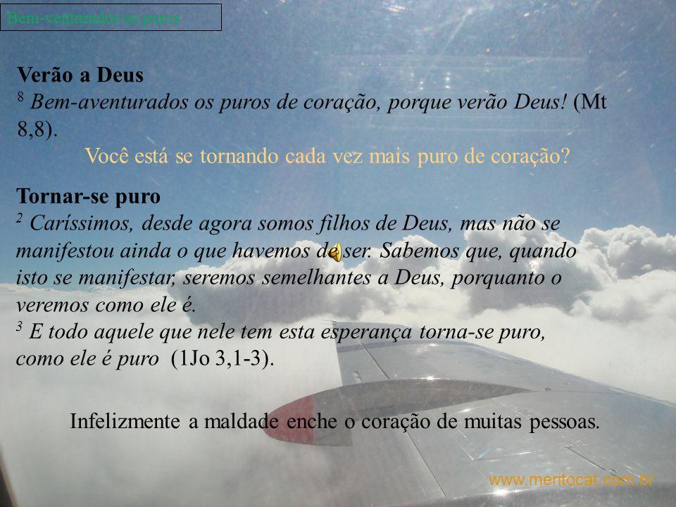 Bem-venturados os puros www.meritocat.com.br Verão a Deus 8 Bem-aventurados os puros de coração, porque verão Deus! (Mt 8,8). Você está se tornando ca