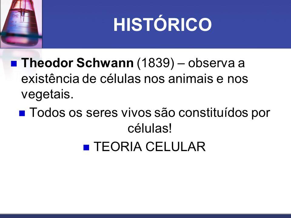 HISTÓRICO  Theodor Schwann (1839) – observa a existência de células nos animais e nos vegetais.