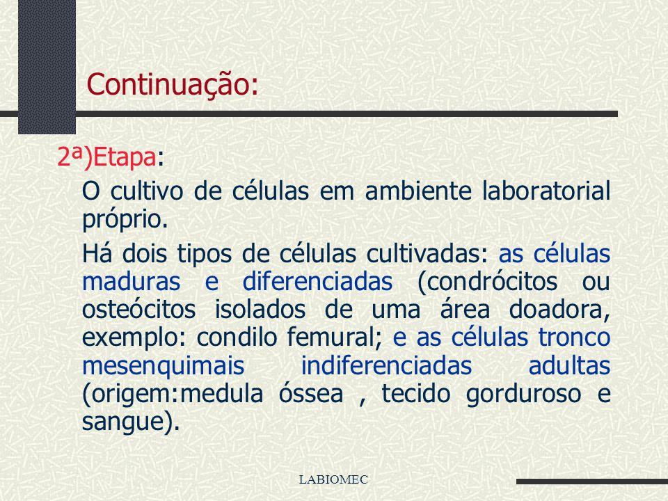 O princípio metodológico mais utilizado, para se fazer engenharia de tecidos, envolve as seguintes etapas: 1ª Etapa) Construção de arcabouços tridimen