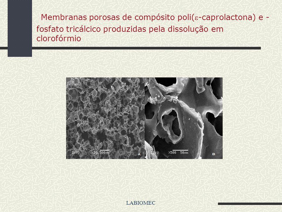 LABIOMEC Exemplos de Scaffols cerâmicos ( HA-TiO 2 )