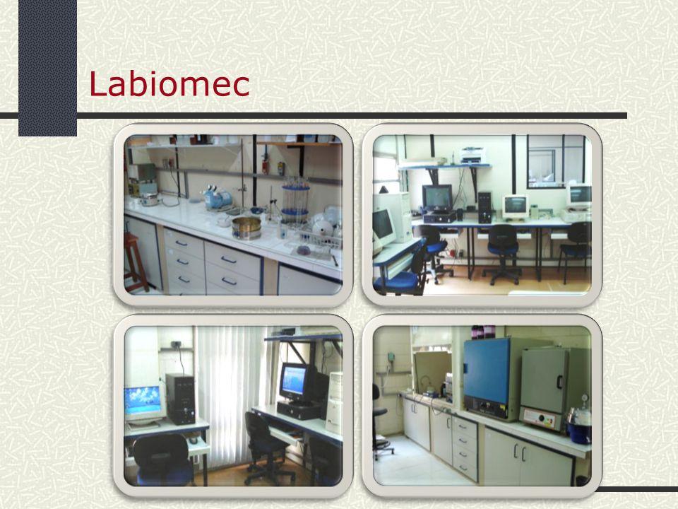 LABIOMEC Biomecânica Sistemas de retenção para crianças em veículos Ergonomia e segurança dos acentos infantis