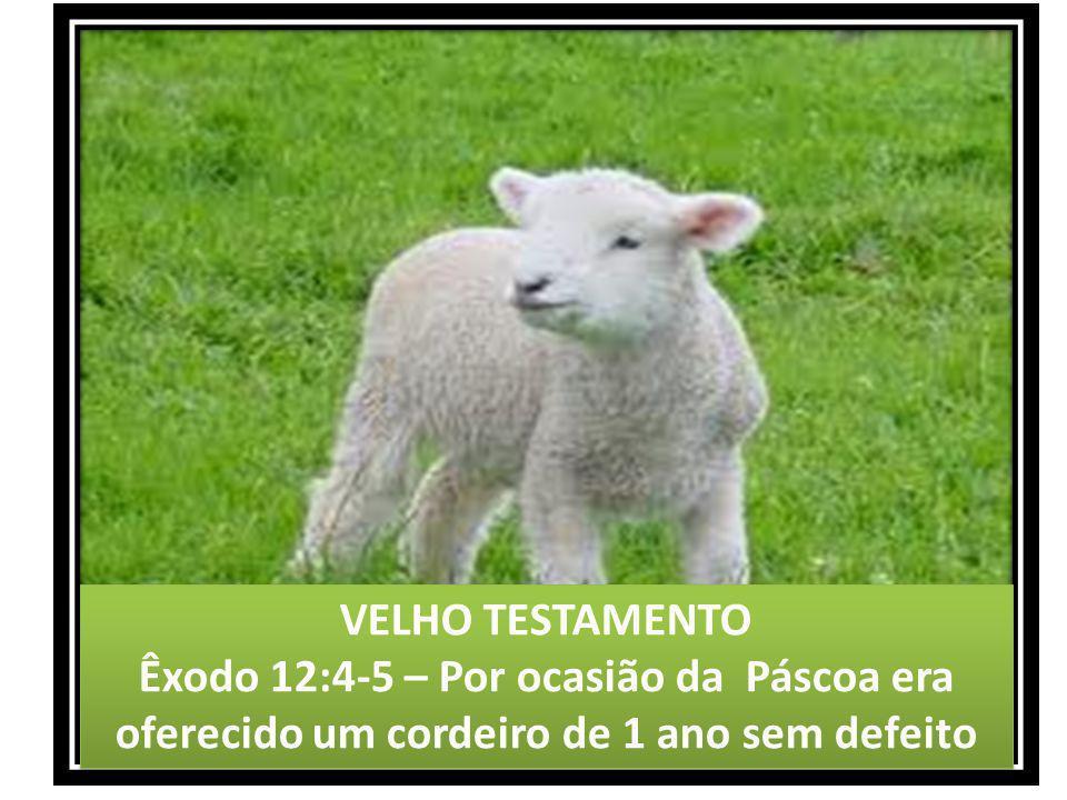 VELHO TESTAMENTO Êxodo 12:4-5 – Por ocasião da Páscoa era oferecido um cordeiro de 1 ano sem defeito VELHO TESTAMENTO Êxodo 12:4-5 – Por ocasião da Pá