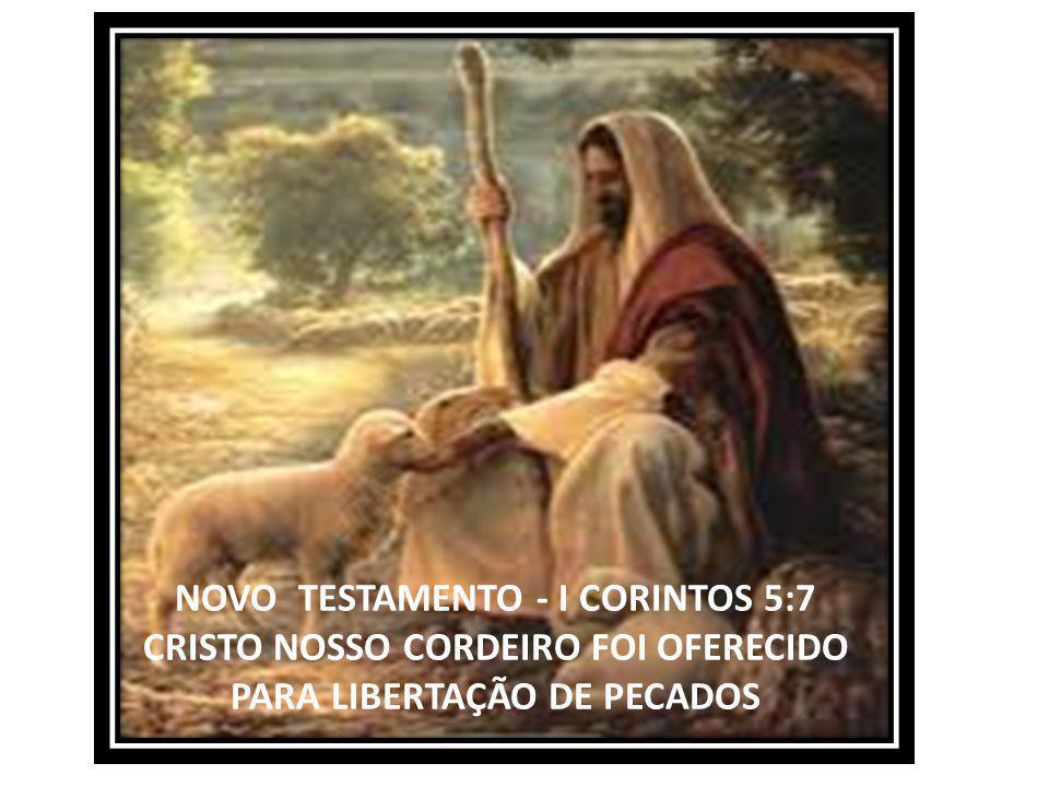 CRISTO É A NOSSA LEI – NOSSO ALIMENTO – NOSSA DIREÇÃO JOÃO 14:3 ...ONDE EU ESTIVER ESTEJA VÓS TAMBÉM