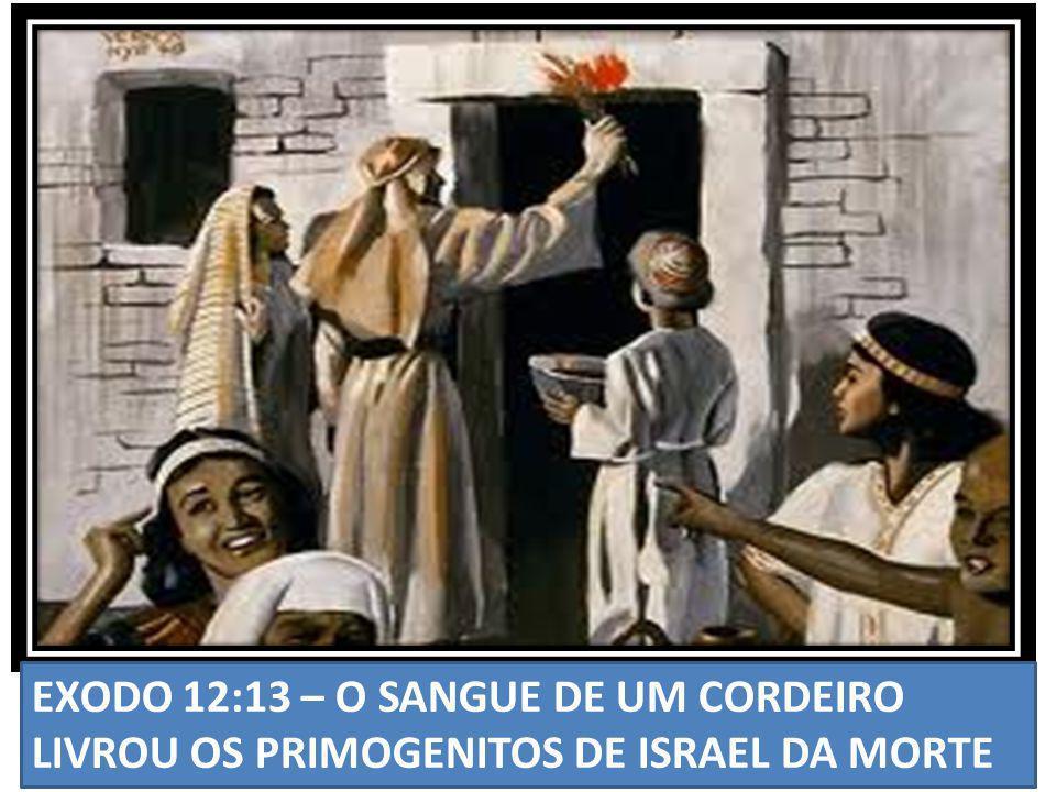 EXODO 12:13 – O SANGUE DE UM CORDEIRO LIVROU OS PRIMOGENITOS DE ISRAEL DA MORTE