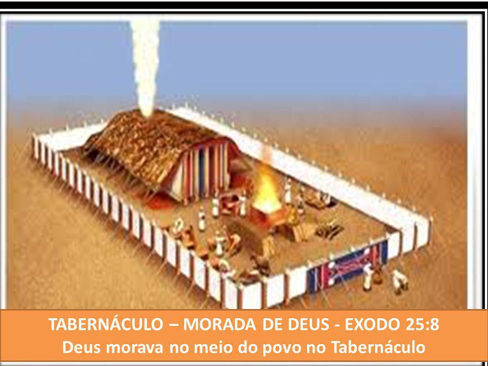TABERNÁCULO – MORADA DE DEUS - EXODO 25:8 Deus morava no meio do povo no Tabernáculo