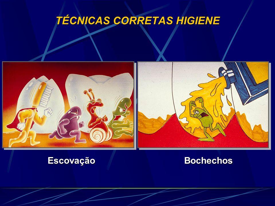 TÉCNICAS CORRETAS HIGIENE EscovaçãoBochechos
