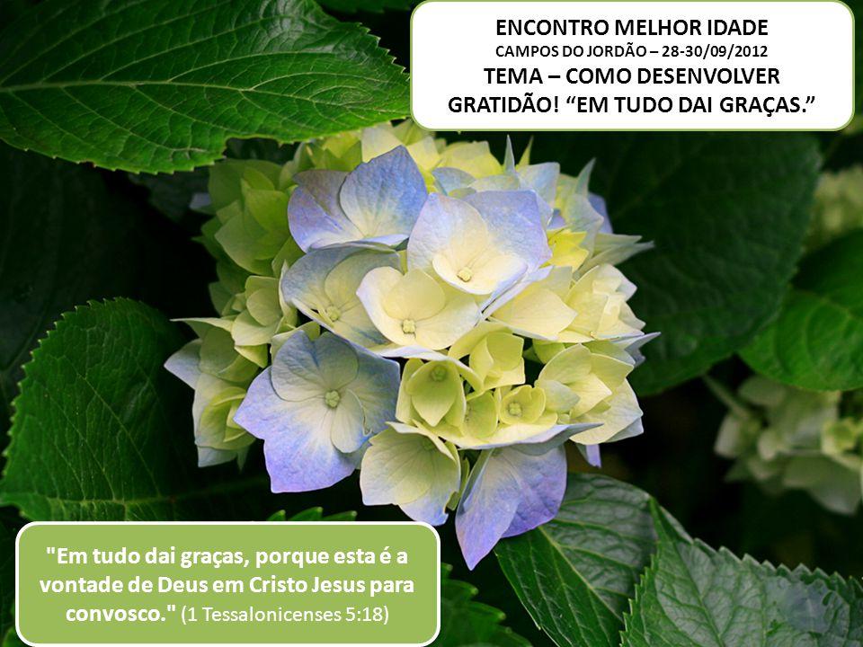 ENCONTRO MELHOR IDADE CAMPOS DO JORDÃO – 28-30/09/2012 TEMA – COMO DESENVOLVER GRATIDÃO.