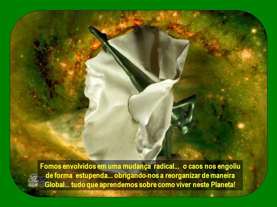 Nesta época denominada confusa... ambientalistas do mundo inteiro... clamam por todos os tipos de proteção !
