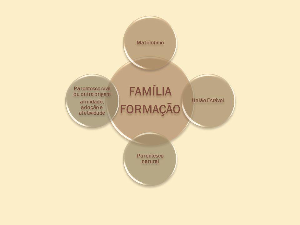 FAMÍLIA FORMAÇÃO MatrimônioUnião Estável Parentesco natural Parentesco civil ou outra origem afinidade, adoção e afetividade