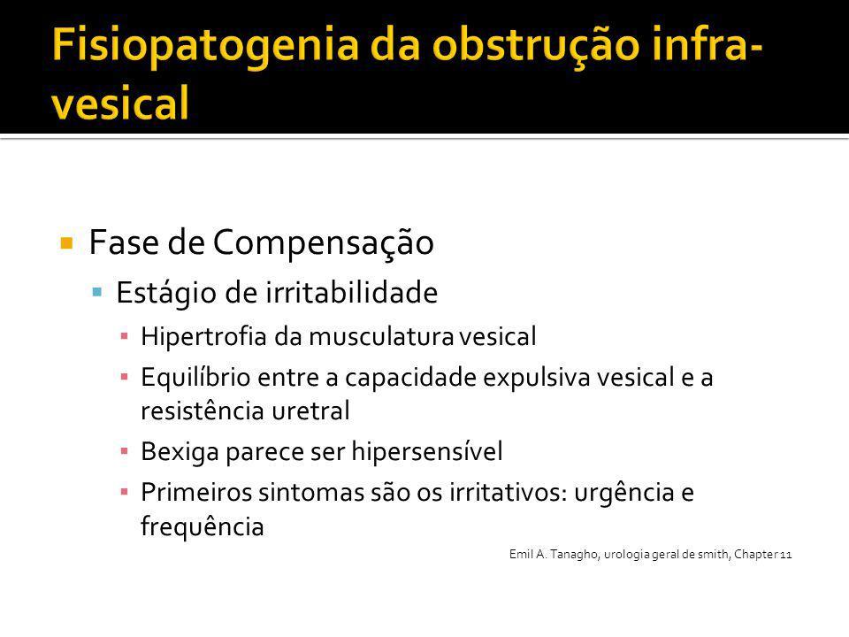  Fase de Compensação  Estágio de irritabilidade ▪ Hipertrofia da musculatura vesical ▪ Equilíbrio entre a capacidade expulsiva vesical e a resistênc