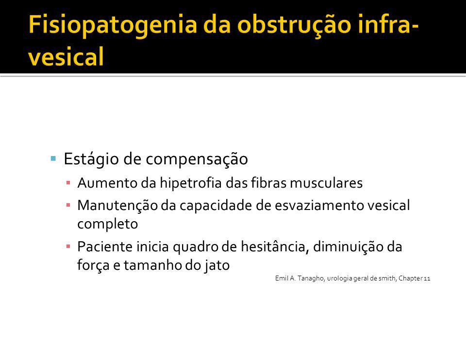  Estágio de compensação ▪ Aumento da hipetrofia das fibras musculares ▪ Manutenção da capacidade de esvaziamento vesical completo ▪ Paciente inicia q