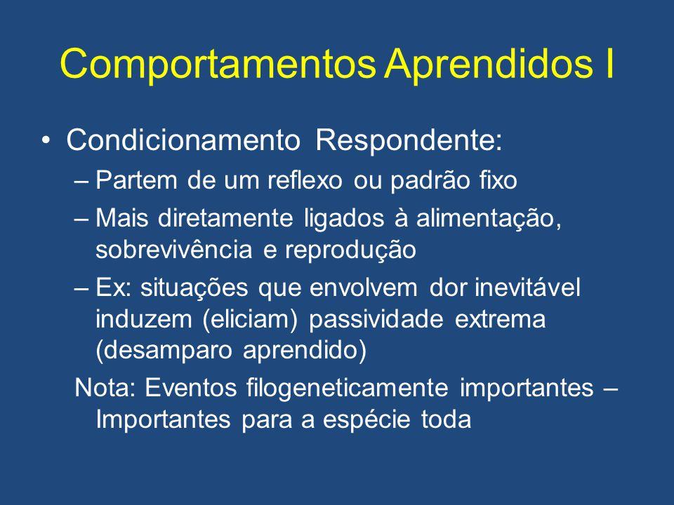 Comportamentos Aprendidos I •Condicionamento Respondente: –Partem de um reflexo ou padrão fixo –Mais diretamente ligados à alimentação, sobrevivência