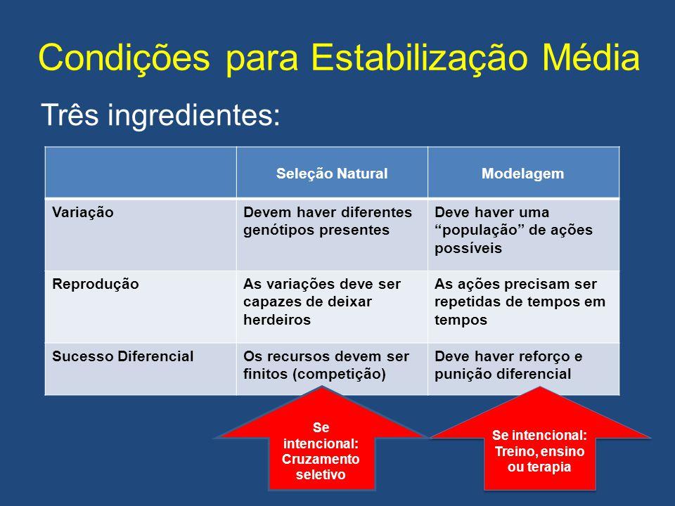 """Condições para Estabilização Média Três ingredientes: Seleção NaturalModelagem VariaçãoDevem haver diferentes genótipos presentes Deve haver uma """"popu"""