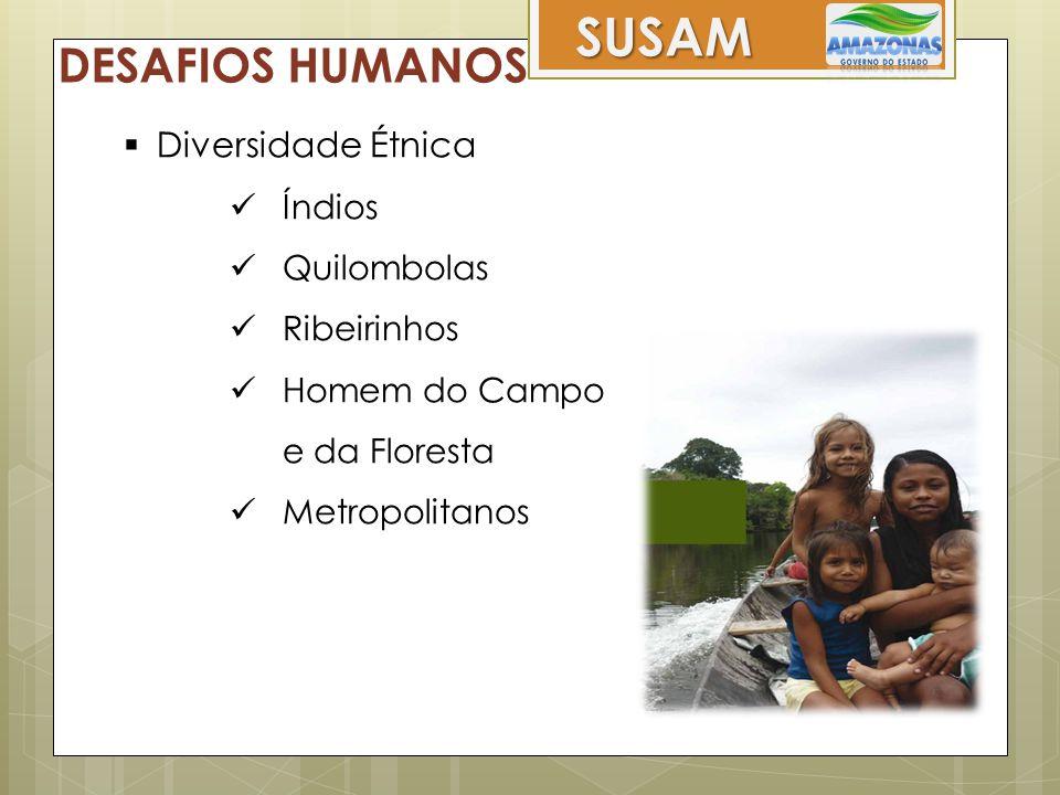 SUSAM DESAFIOS HUMANOS  Diversidade Étnica  Índios  Quilombolas  Ribeirinhos  Homem do Campo e da Floresta  Metropolitanos