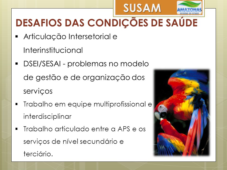 SUSAM DESAFIOS DAS CONDIÇÕES DE SAÚDE  Articulação Intersetorial e Interinstitucional  DSEI/SESAI - problemas no modelo de gestão e de organização d