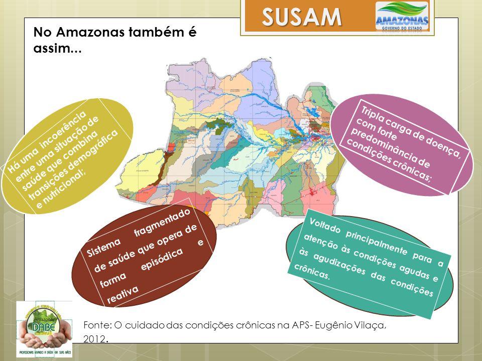 No Amazonas também é assim... Há uma incoerência entre uma situação de saúde que combina transições demográfica e nutricional; Tripla carga de doença,
