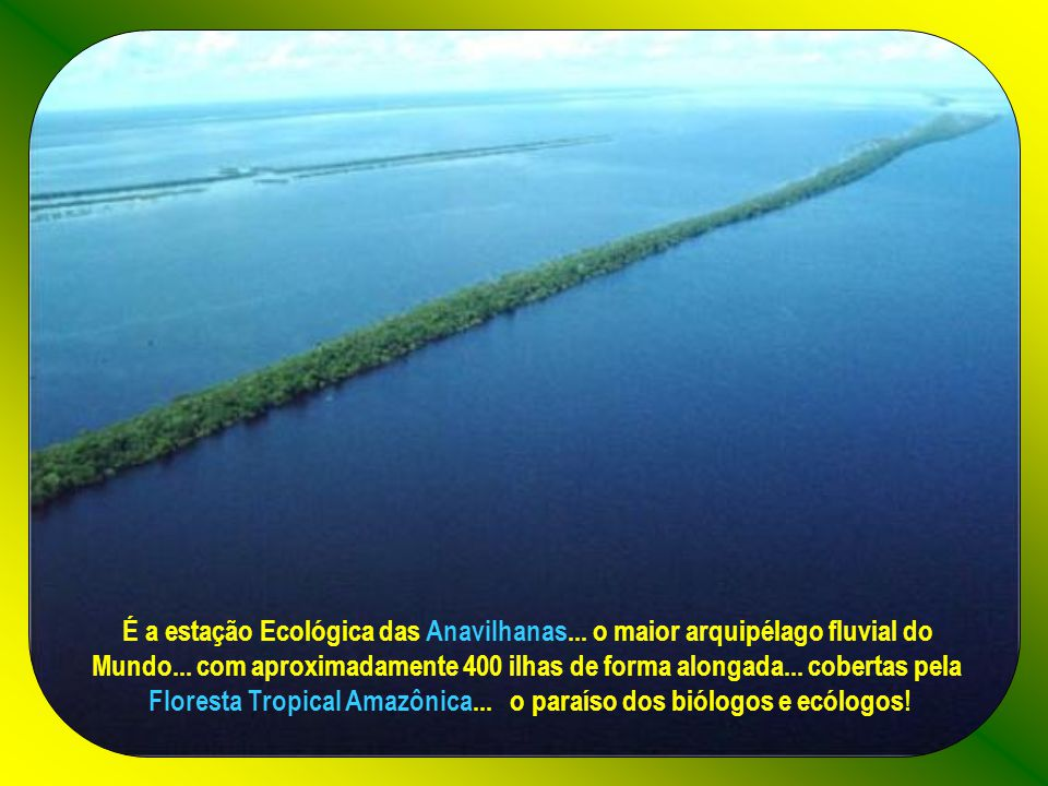 É a estação Ecológica das Anavilhanas...o maior arquipélago fluvial do Mundo...