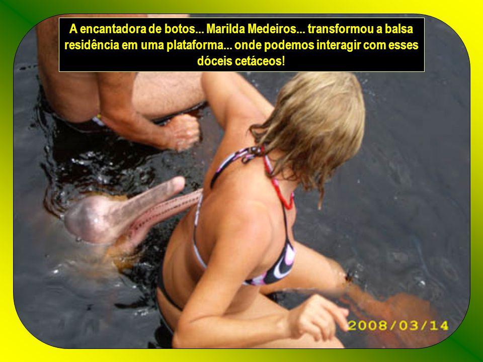 Texto e formatação – rose.acaciana@gmail.com Som – Hino Nacional com pássaros brasileiros