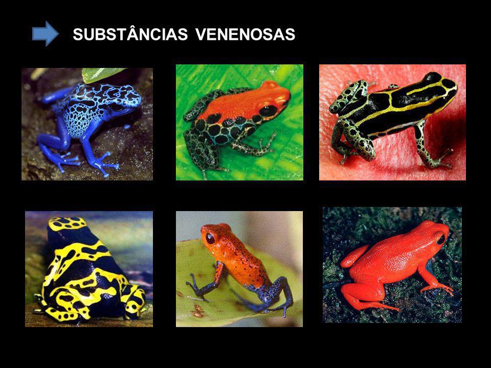 SUBSTÂNCIAS VENENOSAS