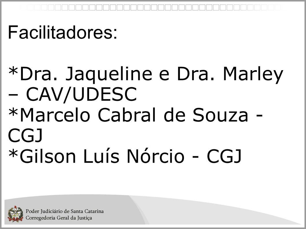 Facilitadores: *Dra. Jaqueline e Dra. Marley – CAV/UDESC *Marcelo Cabral de Souza - CGJ *Gilson Luís Nórcio - CGJ