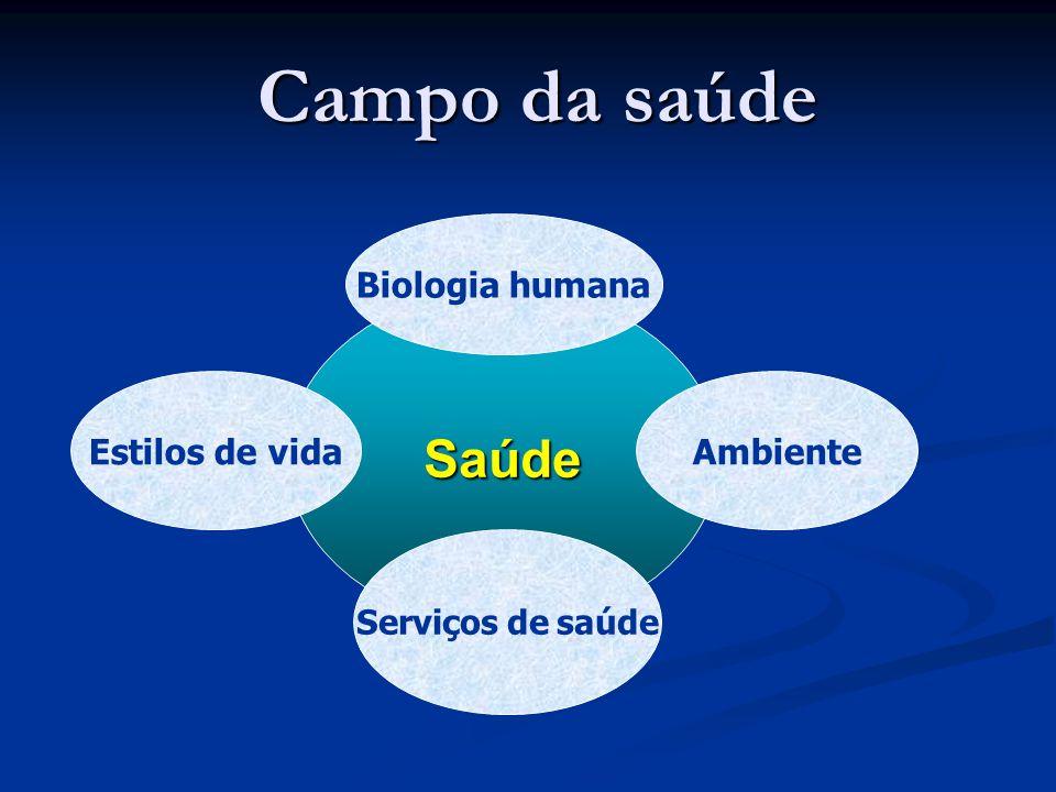 CDSS/Brasil  Mobilização da sociedade; mídia  Página web  Publicações em várias formas  Relacionamento estreito com CMDSS/OMS  CDSS sub-regional Mercosul – reunião de Ministros da Saúde