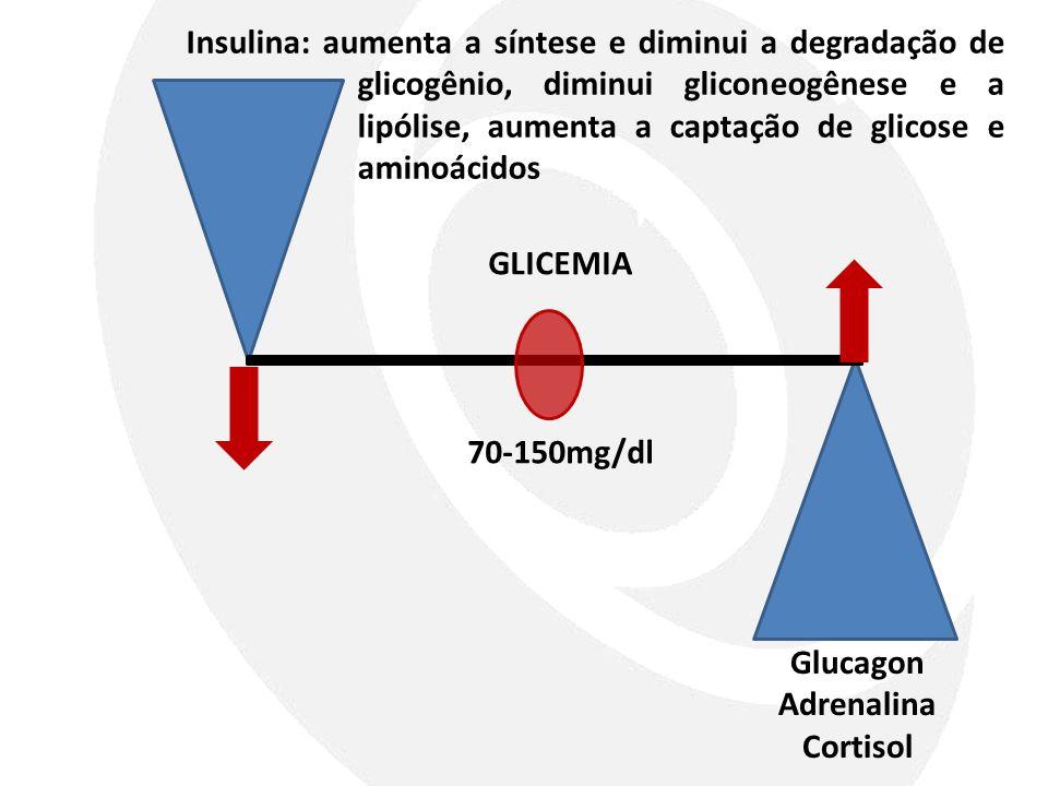 Glucagon Adrenalina Cortisol GLICEMIA 70-150mg/dl Insulina: aumenta a síntese e diminui a degradação de glicogênio, diminui gliconeogênese e a lipólis