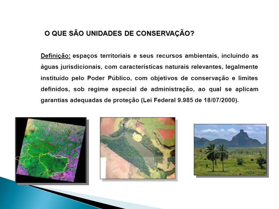 CATEGORIAS DE UNIDADES DE CONSERVAÇÃO  Unidades de Uso Indireto ou Proteção Integral: aquele que não envolve consumo, coleta, dano ou destruição dos recursos naturais.