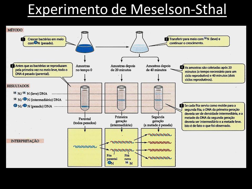 Experimento de Meselson-Sthal