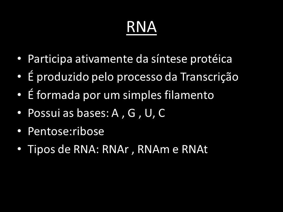 RNA • Participa ativamente da síntese protéica • É produzido pelo processo da Transcrição • É formada por um simples filamento • Possui as bases: A, G