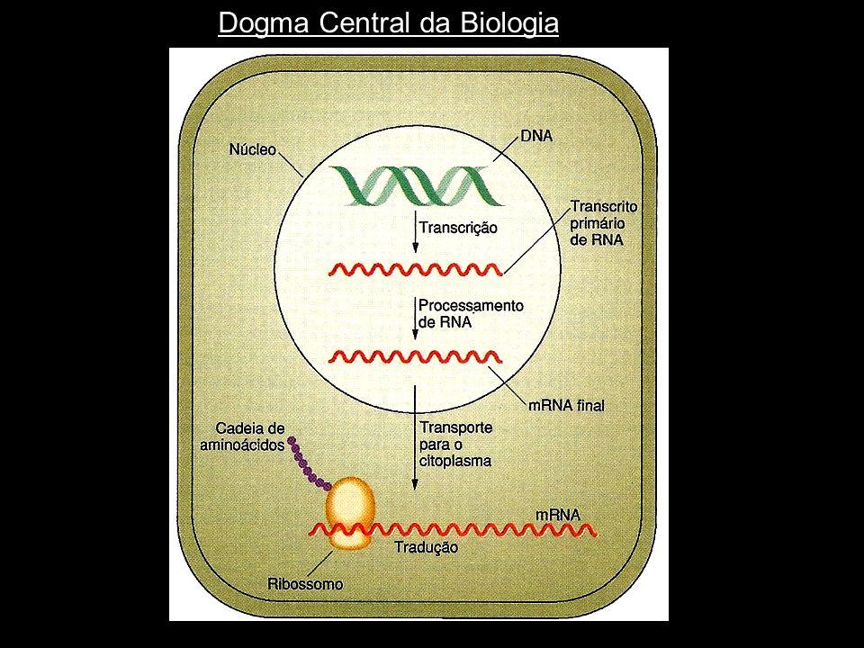 Dogma Central da Biologia