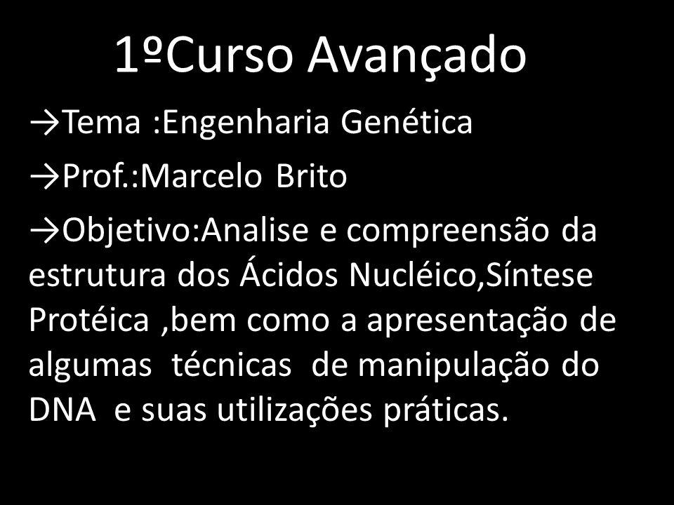 →Tema :Engenharia Genética →Prof.:Marcelo Brito →Objetivo:Analise e compreensão da estrutura dos Ácidos Nucléico,Síntese Protéica,bem como a apresenta