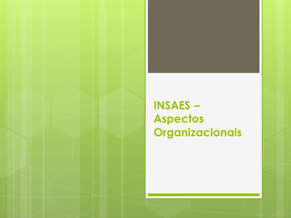INSAES – Aspectos Organizacionais
